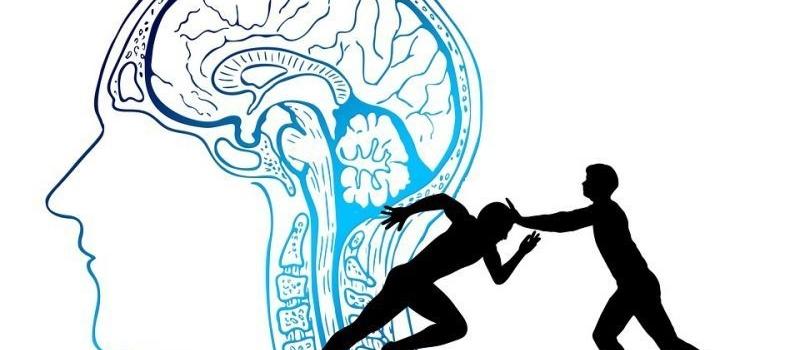 brain-4065088_960_7203908